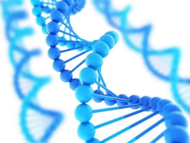 15300 ДНК Ureaplasma urealyticum/Ureaplasma parvum